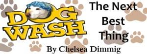 Dog Wash Article Header